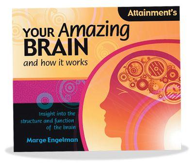 Your Amazing Brain Book